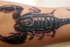 03-tatuaz-rzeszow